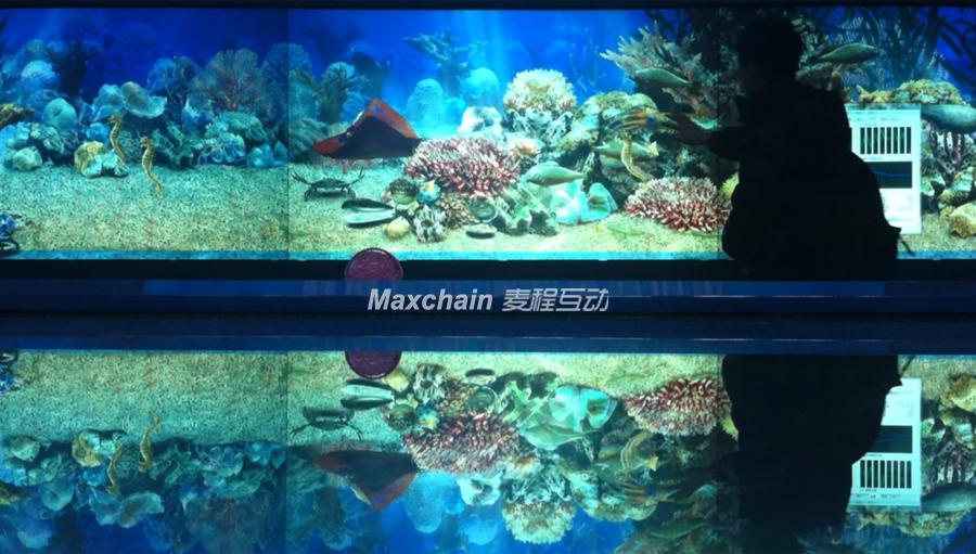 东海牧渔虚拟多点触摸水族互动软件